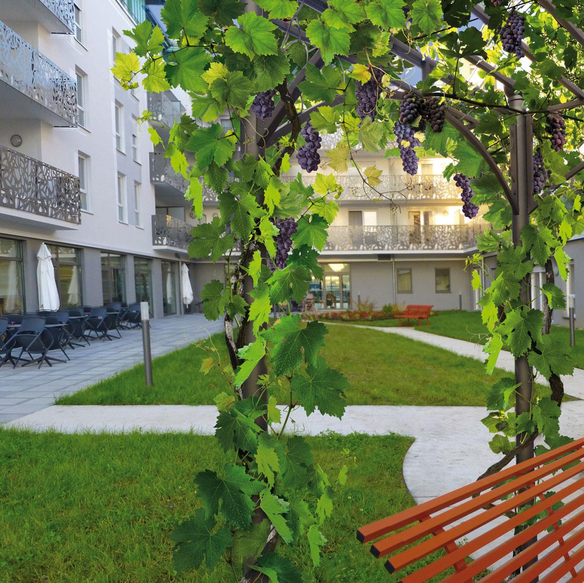 Jardin potager ou jardin d ornement vertumne paysage for Carre jardin