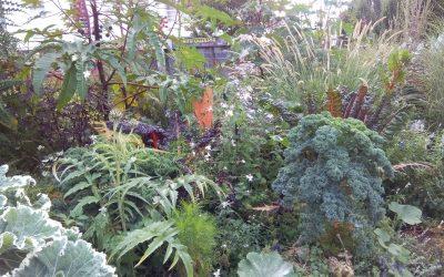 Jardin potager ou jardin d'ornement ?