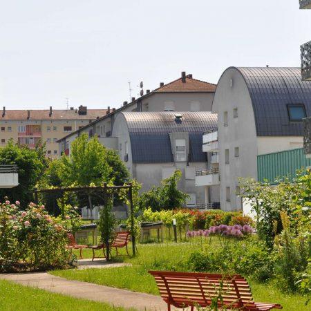 Fleurs et parfums en Alsace
