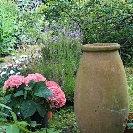 Petit jardin à Sèvres
