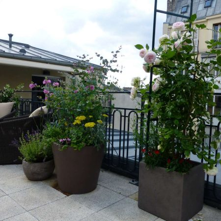 Terrasse au coeur de Paris