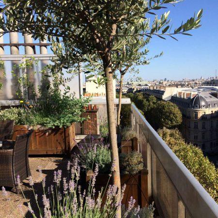Un goût de Provence sur Paris