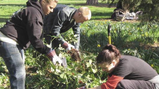 Corporate garden et bien être au travail
